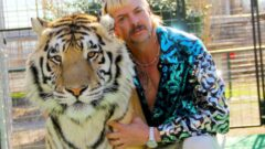 Joe Exotic appeals to Donald Trump for a pardon: 'Be my hero please'
