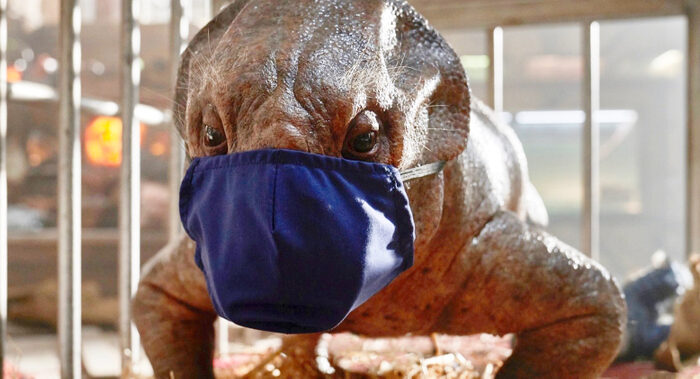 Jurassic World: Dominion Shuts Down Due To Positive COVID Tests